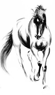 Simple shapes/lines beautiful charcoal drawing - horse