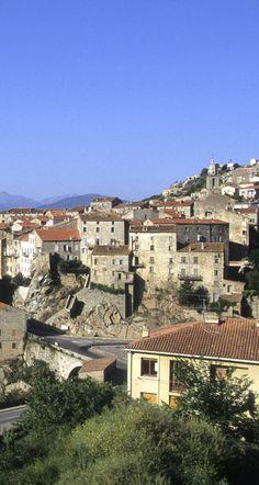 Sartène, Corse du Sud pin