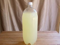 The Old Fashioned Way: Homemade Ginger Beer on The History Kitchen #vintage #recipe