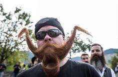 Birds nest beard?