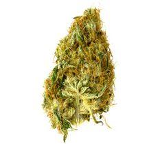 ganjaweh:    Gram of marijuana