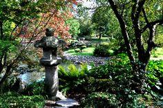 Japanese garden -W/12