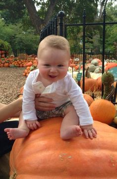Autumn at the Arboretum, Pumpkin Village, The Dallas Arboretum, Garden, Fall, Dallas, Pumpkins, KERA News