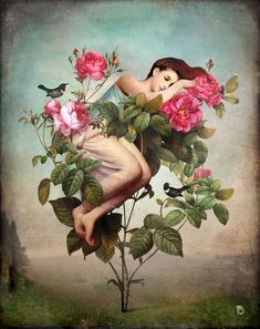 'In+Bloom'+by+Christian++Schloe+on+artflakes.com+as+poster+or+art+print+$22.17