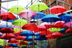 Celebrate the best of umbrellas on February 10 for National Umbrella Day 2016