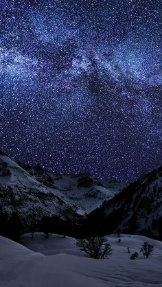 Starry Night and Winter Landscape                                                                                                                                                                                 More