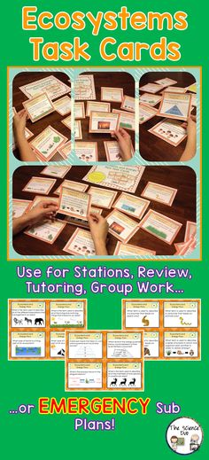 Ecosystems Task Cards. This set contains 32 different cards. These cards are great for review, rotations, partner work, or independent study.