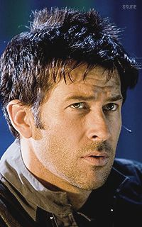Joe Flanigan - brune
