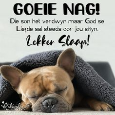 Goeie Nag, Afrikaans, French Bulldog, Friendship, Night, Phone, Quotes, Quotations, Telephone