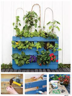 Create your own pallet garden Easy Projects, Craft Projects, Garden Makeover, Cool Magazine, Upcycled Crafts, Planter Pots, Pallet, Create, Plants