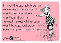 Im not the cat lady type