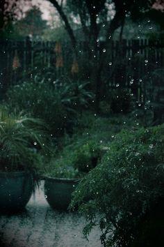 The Sound of Rain Hitting Soft Ground