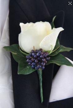 white rose with steel berry jilljeffries.com