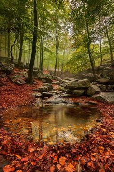 Feel the serenity...