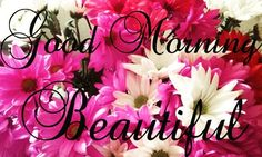 Good Morning Beautiful Souls!  Fresh bouquet of flowers for me and thought I'd share them with you.  Have a marvelous Monday Beautiful!  Muah!            #goodmorning #morning #day #aquawardbeauty #daytime #sunrise #morn #awake #wakeup #wake #wakingup #ready #sleepy #breakfast #tired #sluggish #bed #snooze #instagood #earlybird #sky #photooftheday #gettingready #goingout #sunshine #instamorning #work #early #fresh #refreshed