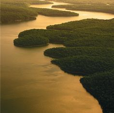 Here's a fun fact: The Lake of the Ozarks has more miles of shoreline (1,150) than the coast of California!