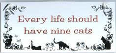 More if possible!  #cats #quotes