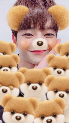 Kang Chan Hee, Chani Sf9, Fnc Entertainment, Kpop, My Best Friend, Boy Groups, Teddy Bear, Couple Photos, Animals