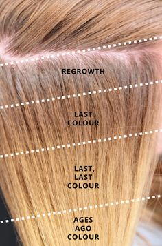 *TIP* Knowing your Hair history is the key to being a great Colourist