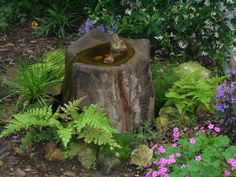 Just about anything can be a focal point for a fun spot to visit - bird bath/pond quick corner landscaping idea