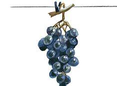 Чтобы получать хороший урожай винограда в средней полосе, можно использовать секреты и хитрости опытных виноградарей