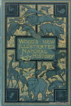 Wood's New Illustrated Natural History… Rev.Wood 1893 Wood's New Illustrated Natural History… Rev. Book Cover Art, Book Cover Design, Book Design, Book Art, Web Design, Victorian Books, Antique Books, Illustration Art Nouveau, Book Illustration