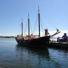 The Halifax Waterfront was much quieter than when the Tall Ships were there, but there were still interesting boats to look at. Halifax Waterfront, Travel Memories, Tall Ships, Canada Travel, Nova Scotia, Sailing Ships, Places Ive Been, Boats, Travel Souvenirs