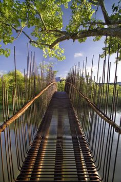 "To connect a house to a guest house of their design in Austin, Texas, Miró Rivera Architects designed a pedestrian footbridge that takes its cues from its natural context. The bridge uses 5"" diameter pipes for its 80' span, with 1/2"" diameter bars acting as decking and guardrails. The bars are bent up and down, each ending at irregular heights."