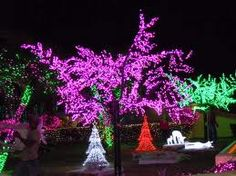 Christmas in Cayman Islands :)