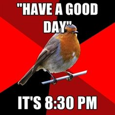 Retail Robin - Most popular images all time - page 29 | Meme Generator