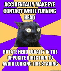 Anxiety Cat: Accidently make eye contact while turning head; rotate head equally in the opposite direction avoid looking like staring.