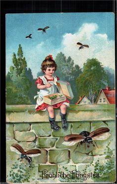 172.839 Pfingsten, Mädchen mit Karton, fliegende Maikäfer | eBay