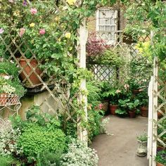 Pretty garden archway with trellis work and extensive greenery - a city garden with a touch of the country cottage. Arch Trellis, Garden Trellis, Trellis Ideas, Lattice Ideas, Privacy Trellis, Rose Trellis, Garden Buildings, Garden Structures, Diy Garden