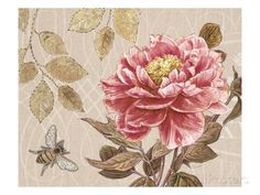 Art Print: Bumble Bee and Peony Art Print by Chad Barrett by Chad Barrett : Chad Barrett, Decoupage, Peach Peonies, Botanical Art, Find Art, Framed Artwork, Rose, Art Prints, Drawings