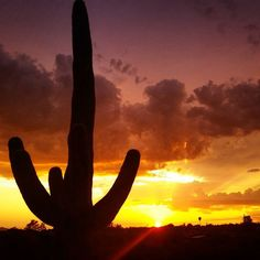 Tucson, Arizona Sunset (Photo via Instagram by @trevegg7 - Click on the pin when you are ready for info about Tucson)