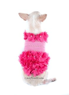 Dog Dress Pink Dog Clothes XXS Beach Summer Pet by myknitt on Etsy