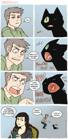 Catty Combat This is so totally me with my Ramses... and he's a mouthy black fuzzball, too.