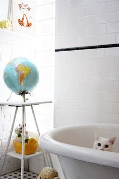 Arlo approves of the bathtub, too. See the full home tour here: Sneak Peek: Lizzy Janssen. Baby Cats, Cats And Kittens, Palette Pastel, Animal Gato, Black And White Tiles, Up House, Cat Boarding, White Cats, Christmas Cats