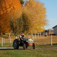 Do you think Tractor Ride With PawPaw. deserves to win the Steiner Tractor Parts Photo Contest?  Have your say and vote today for your favorite antique tractor photos!