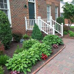 Gorgeous {Front Yard} Landscaping!