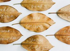 once wed - reception decor - table decor - place cards - fall wedding place cards - calligraphy by meagan tidwell
