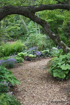 Path at Water Oak Garden