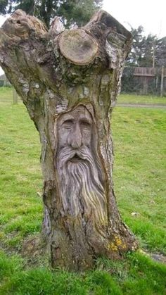 Wood Carving Faces, Tree Carving, Wood Carving Patterns, Wood Carving Art, Wood Carvings, Wood Sculpture, Sculptures, Sculpture Ideas, Weird Trees