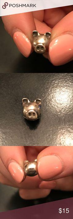Pandora Pig Charm Pig Charm Pandora Jewelry Bracelets