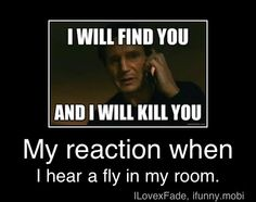 because flys are annoying and I hate them.