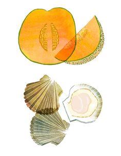 Claudia Pearson illustration