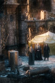 Gandalf, Thranduil and Bard . The Hobbit: the battle of five armies