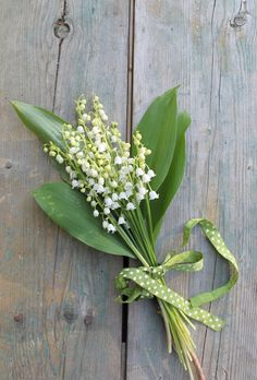Lily Of The Valley-on aged wood-beautiful