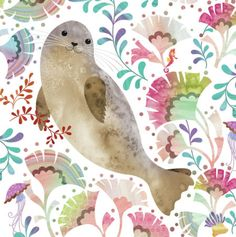 Helen Rowe - Harbour Seal underwater .jpg