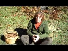 From Tree to Table: gathering and processing acorns - YouTube
